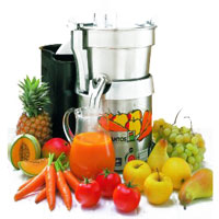 Juice Extractor 28